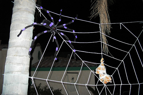 Halloween Decorations Spider Web Make Make Spider Webs That Cling to