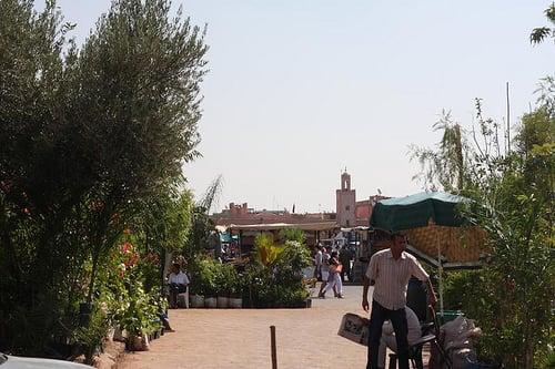 Morocco: Marrakech, Djemaa el Fna: October 2010