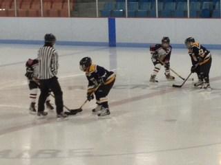Kids playing hockey