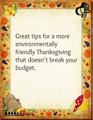 Have an Eco-Friendly, Budget-Friendly Thanksgiving!