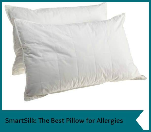 The Best Pillow for Allergies