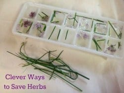 Save those herbs