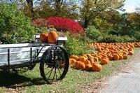 Red Apple Farm in Massachusetts