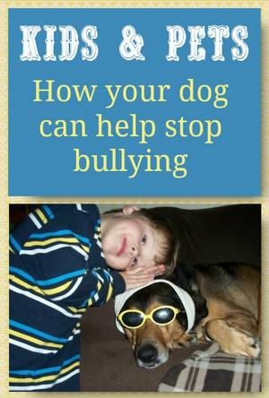 Pets & Bullying: How Your Pets can help stop bullying