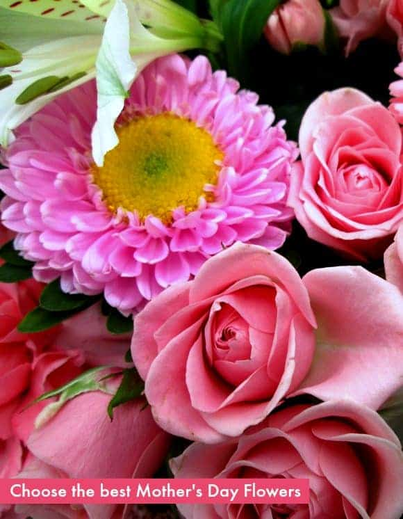 tips-choosing-best-mothers-day-flowers