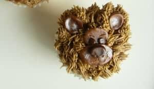 Bears Cupcake Recipe
