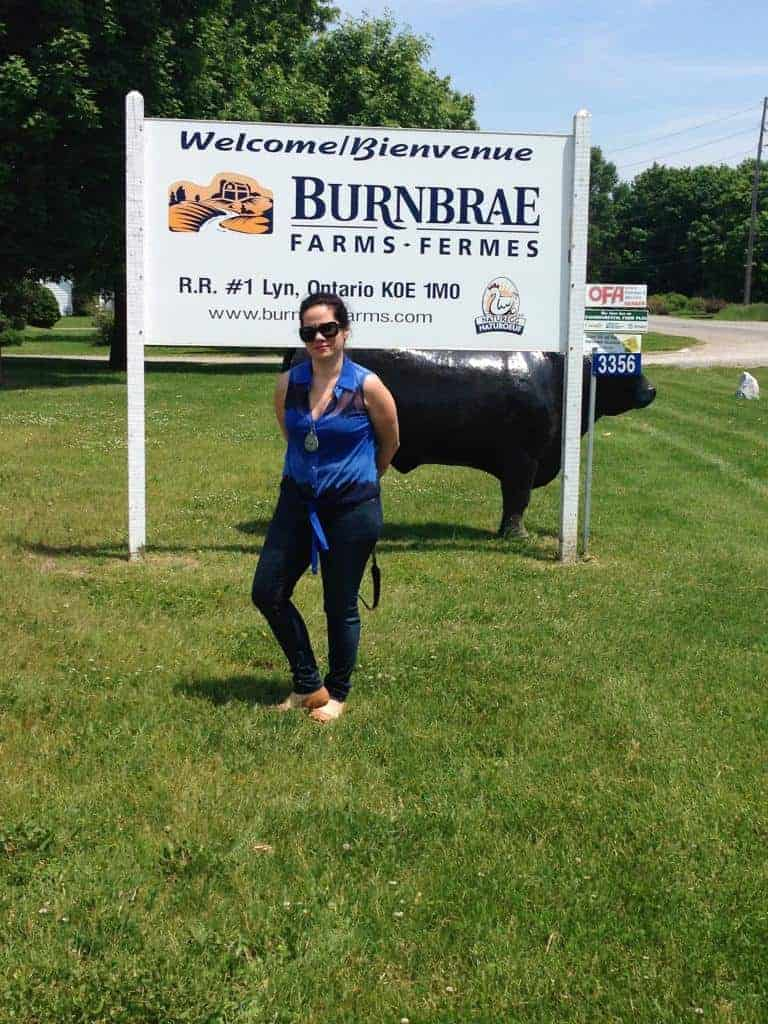 burnbrae-farm-tour