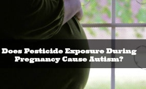 Can pesticide exposure during pregnancy cause autism
