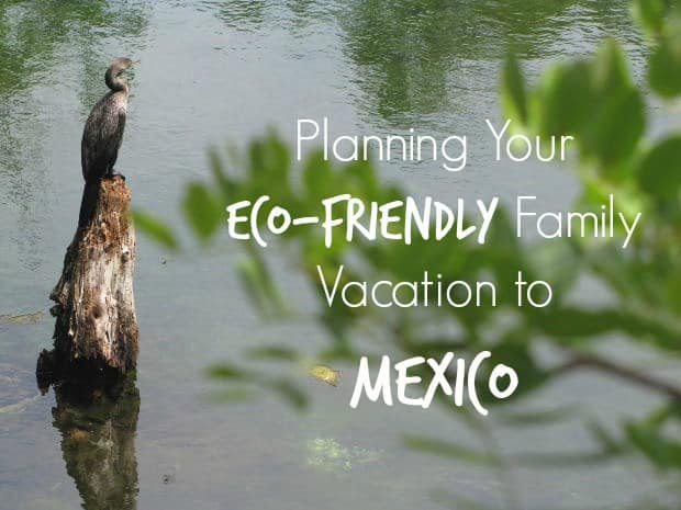 eco-friendly-family-vacation-mexico