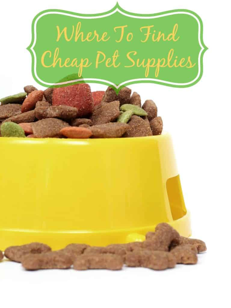 Where To Find Cheap Pet Supplies to Save Money on Pet Costs | OurFamilyWorld.com