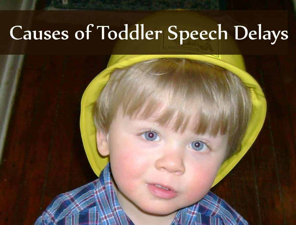 Causes of Toddler Speech Delays