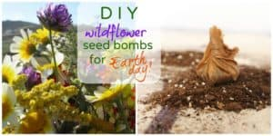 Easy Earth Day Craft: Wildflower Seed Bombs