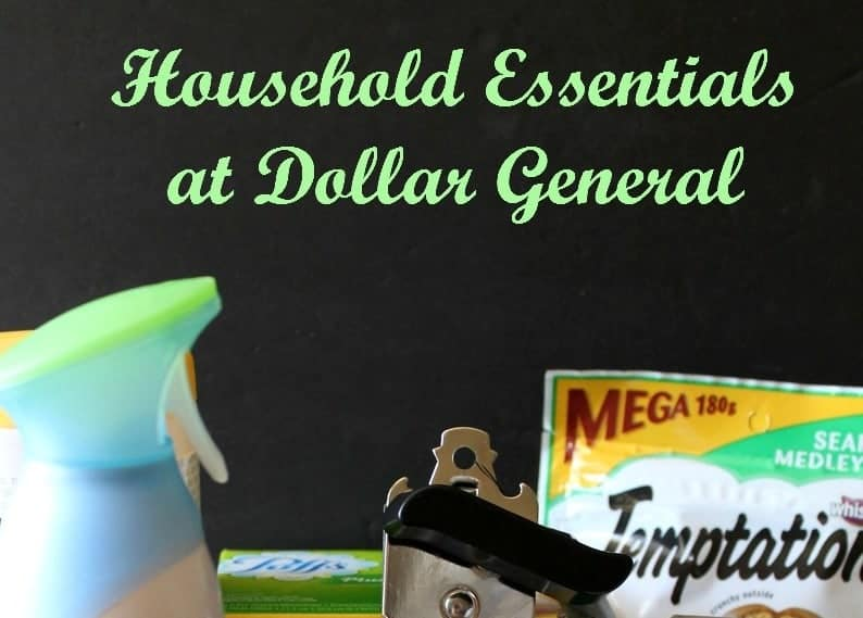 One-Stop Household Essentials Shopping at Dollar General