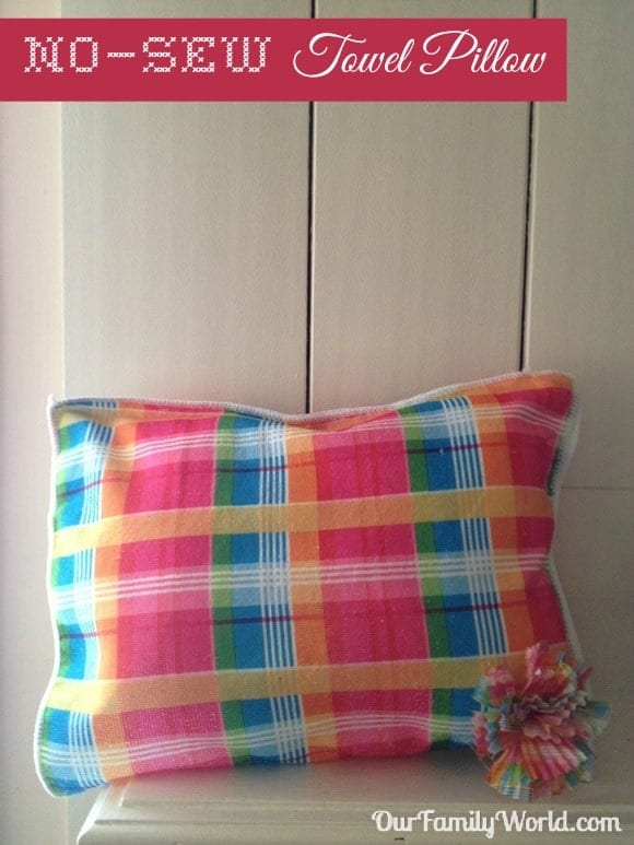 Earth day craft: No sew pillow