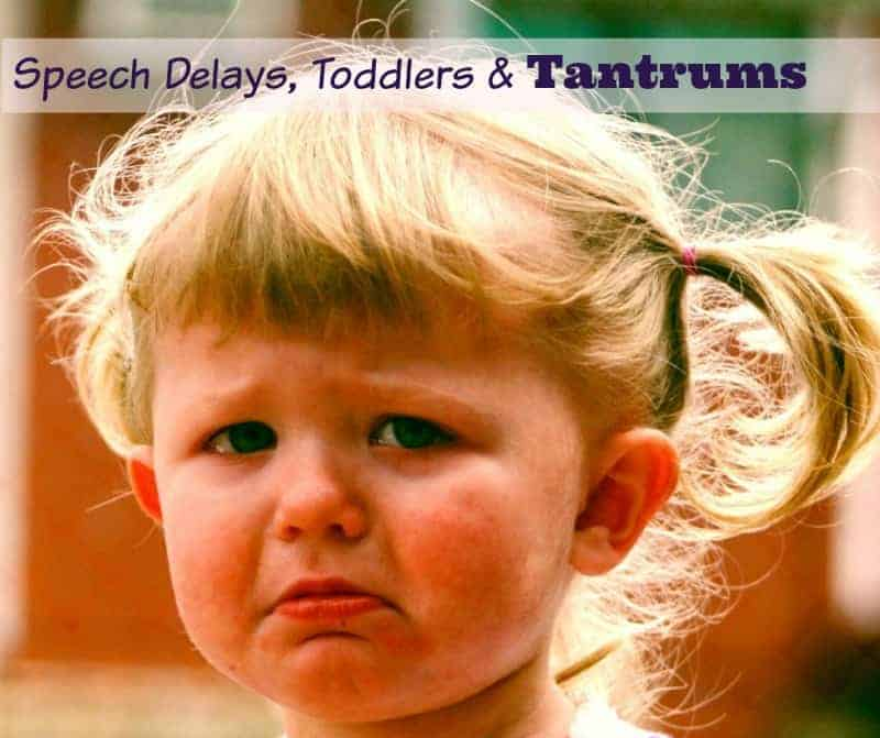 Toddler speech delays and tantrums seem to go hand--in-hand. Check out our parenting tips to help get your through the rough times with your sanity in tact.