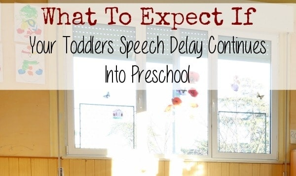 Wondering what to expect if your toddlers speech delay continues into preschool or beyond? Take a look at how your child's school may handle it.