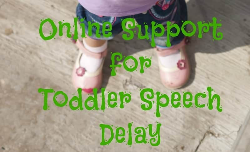 Online Support for Toddler Speech Delay