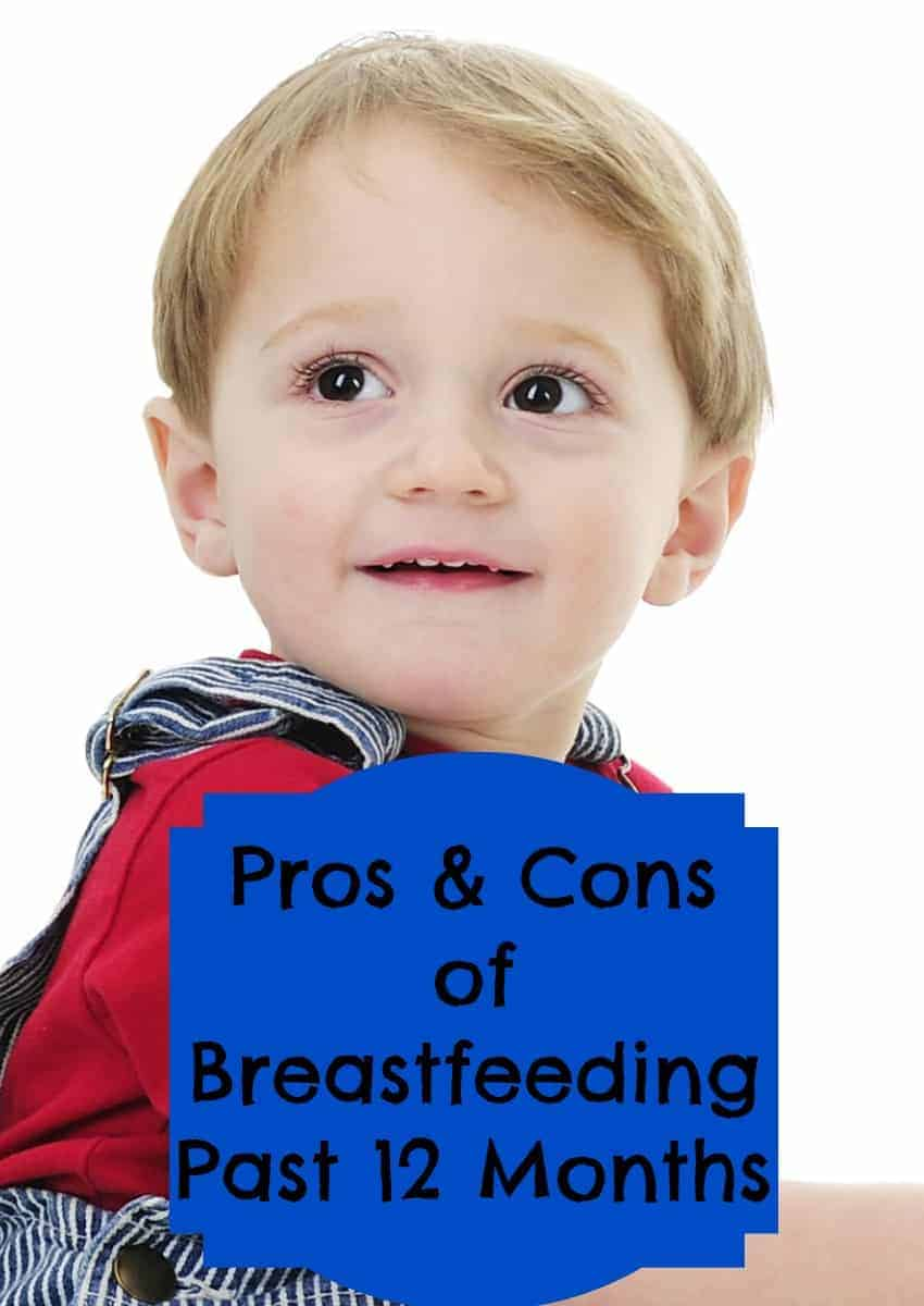 Wondering about the Pros and Cons to Breastfeeding Past 12 Months? We'll help you out with our tips that let you decide the best way to feed your baby!