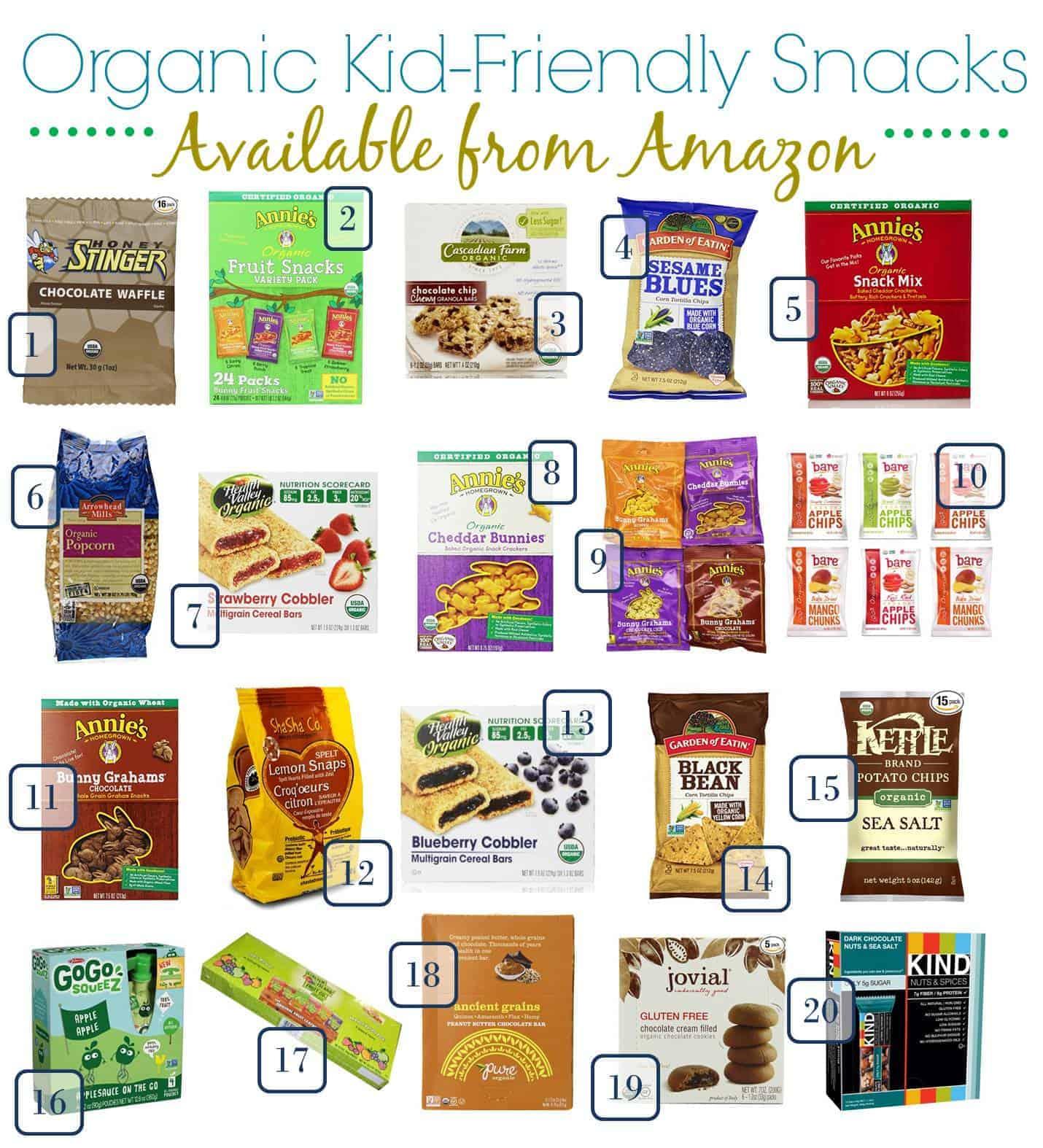 Organic Back to School Snacks for Kids