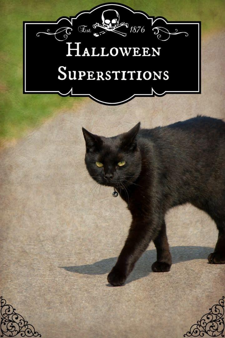 Halloween is a common time for superstitions and they date back thousands of years. Check out some spooky Halloween superstitions!