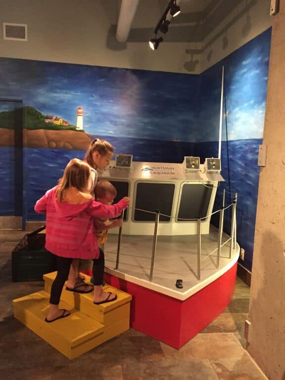 fundy-discovery-aquarium-in-new-brunswick-interactive-family-fun-for-all