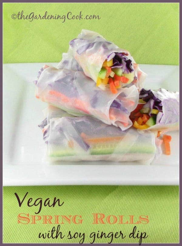 veganrolls vegetarian meals for large families