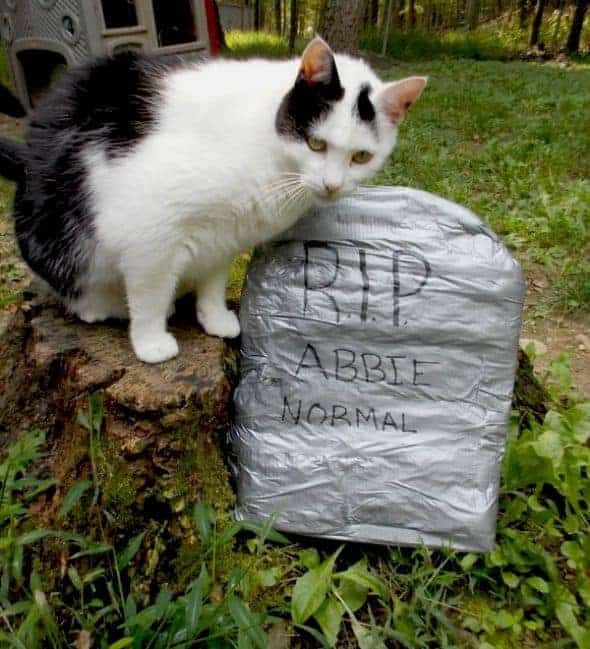 duck tape tombstone Halloween Crafts For Kids