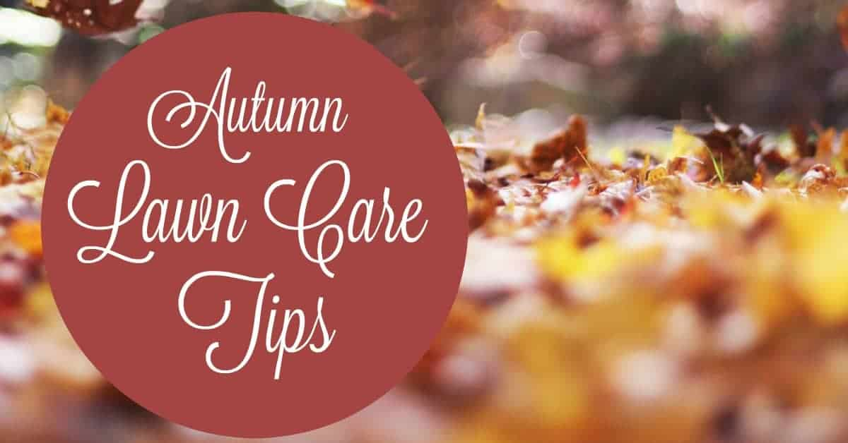 Lawn care tips for autumn our family world - Autumn lawn care advice ...