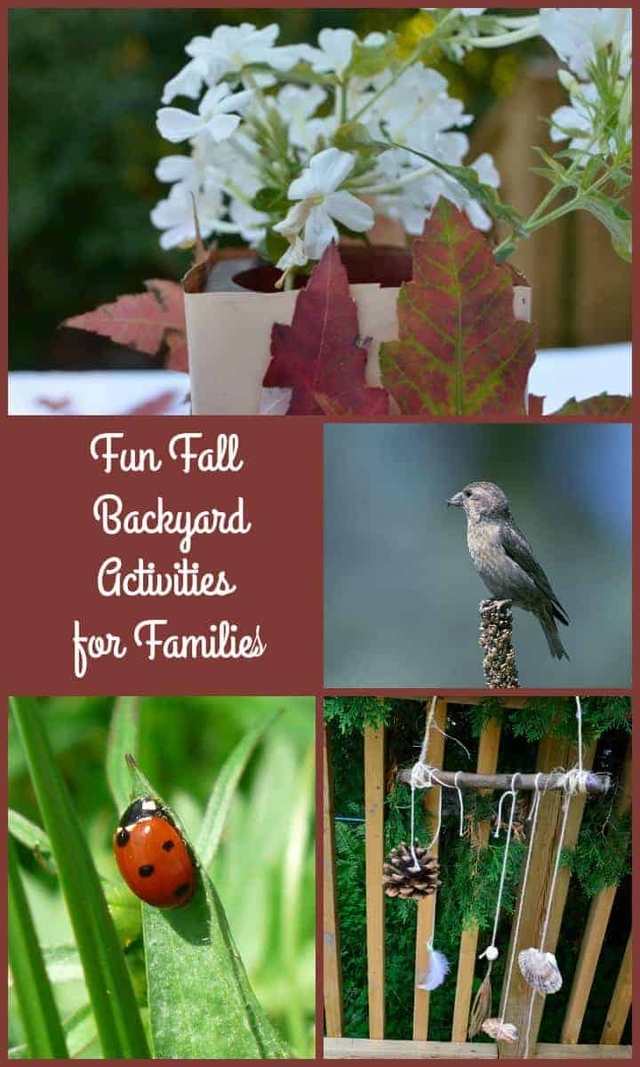 You can enjoy outdoor family activities in every season if you're creative! Check out our favorite fall family activities that you can do in your backyard.