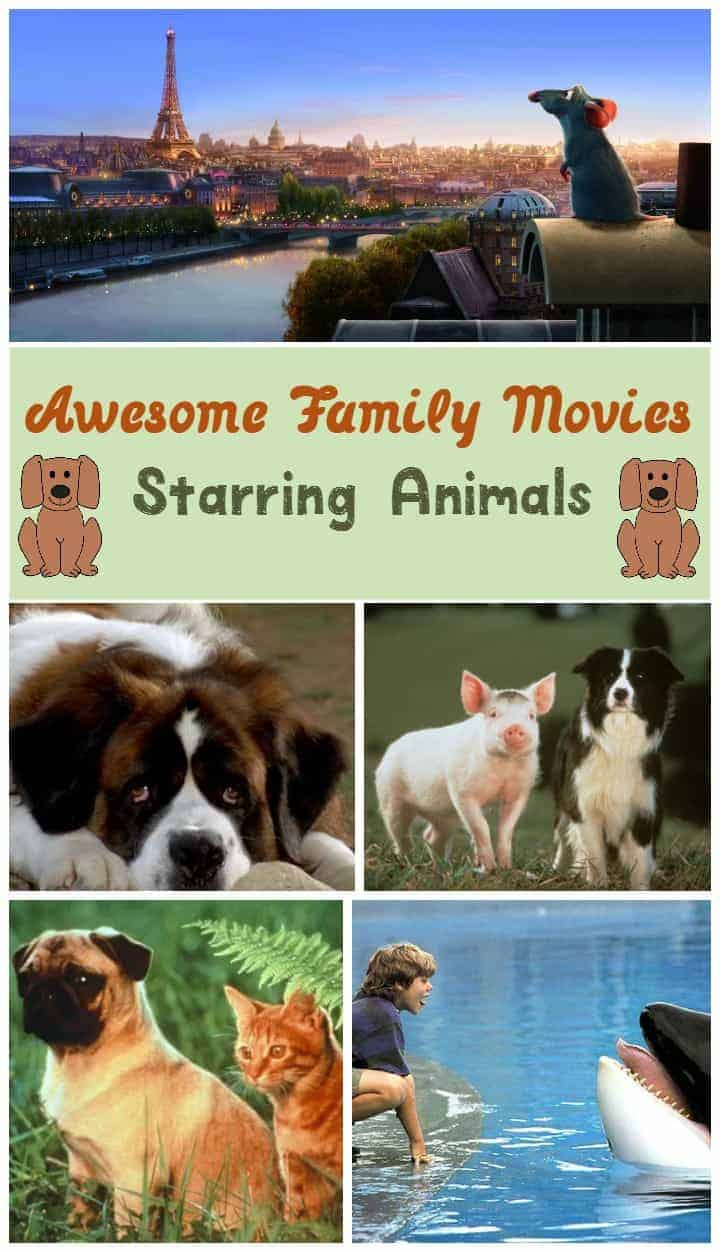 Good family movies about animals make for entertaining ways to teach your kids about respecting wildlife & pets! Check out a few of our favorites!