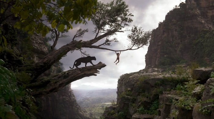 Jungle Book Quotes Interesting The Jungle Book Trivia Facts And Quotes
