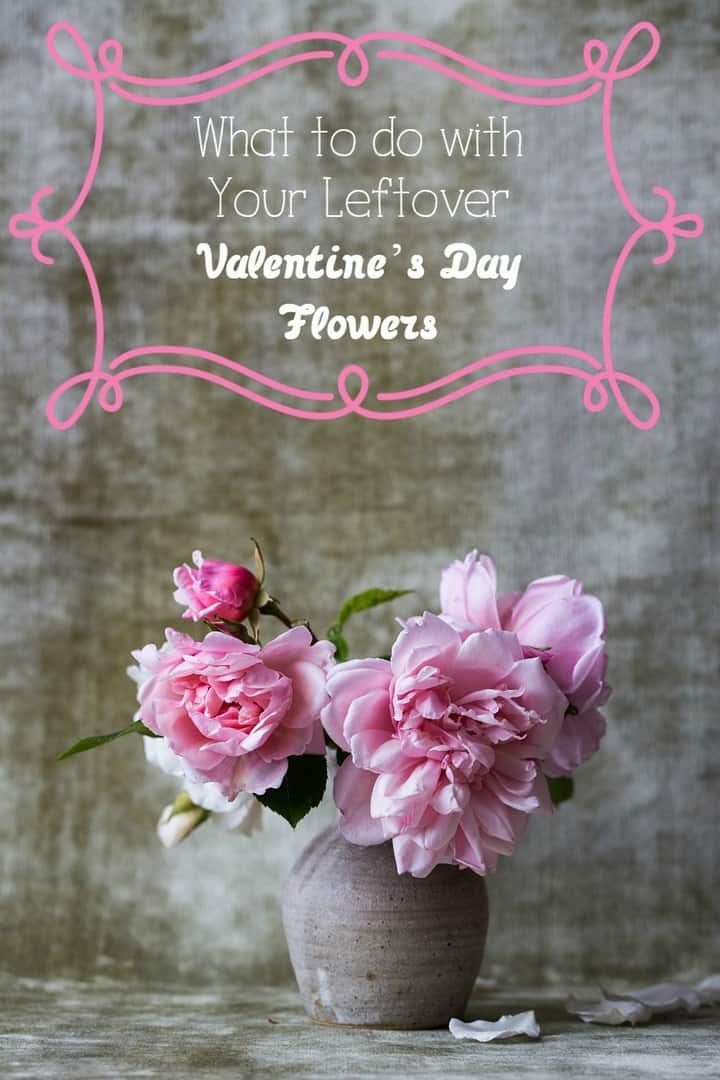 What do you do with those leftover Valentine's Day flowers? It seems like such a shame to toss them in the trash! Check out these ideas for preserving their beauty and reusing them!