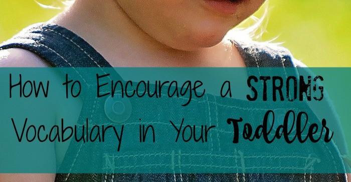 Wondering how to encourage a strong vocabulary in your toddler? Keep reading, it might not be as difficult as you think.