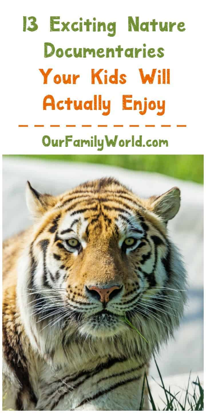 Finding great nature documentaries that kids actually love watching isn't hard these days! Check out 13 of our top picks for your family!