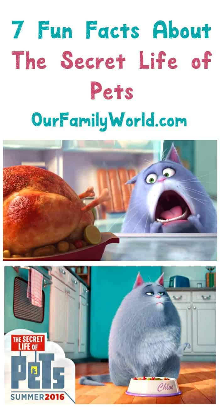 Looking for fun facts about The Secret Life of Pets? We have you covered!