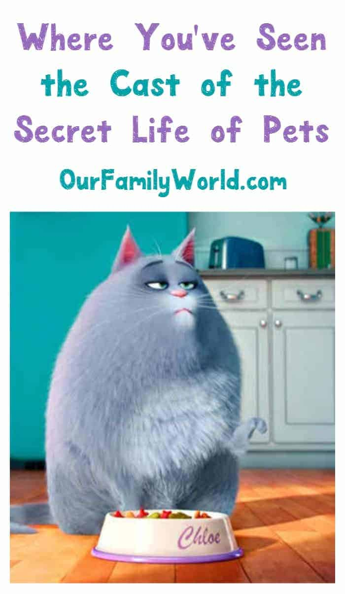 Wondering where else you've seen the cast of The Secret Life of Pets? Find out here!