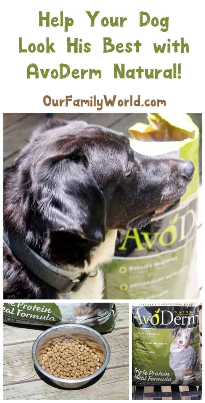 Got an itchy dog with lackluster fur? See how AvoDerm Natural gets my pooch looking and feeling his best again in just six weeks!