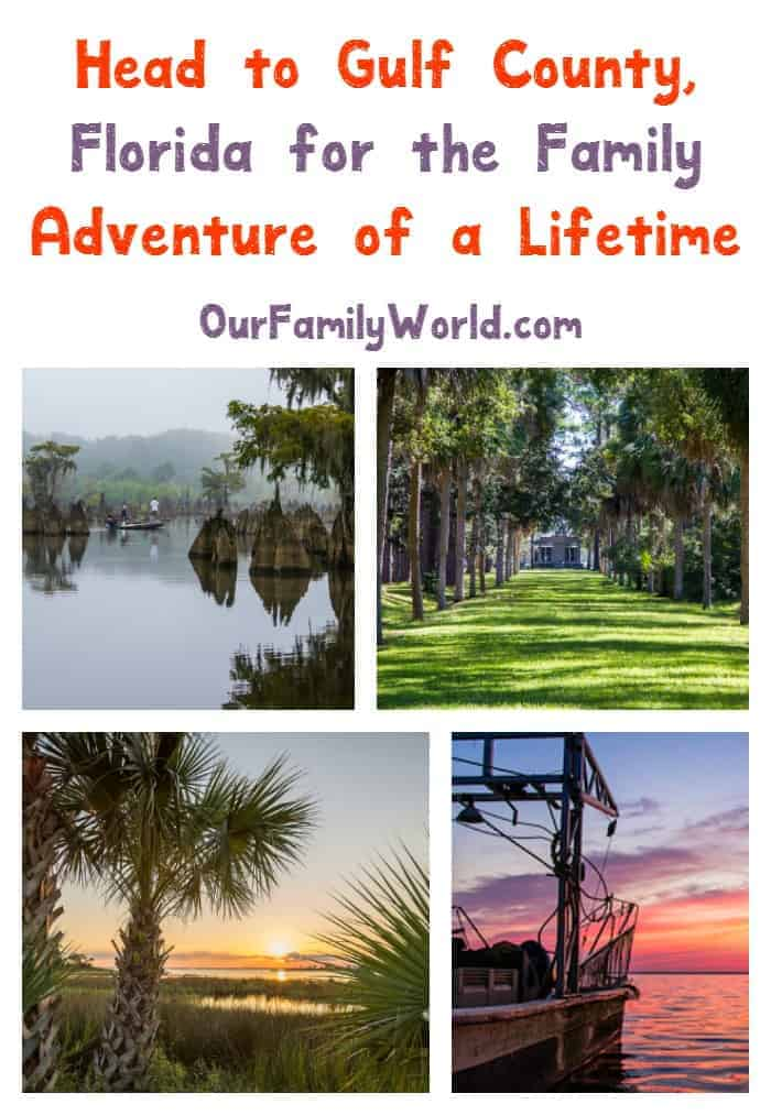 Get ready for the family vacation of your dreams! Head to Gulf County, Florida and discover the adventure of a lifetime! Check it out!