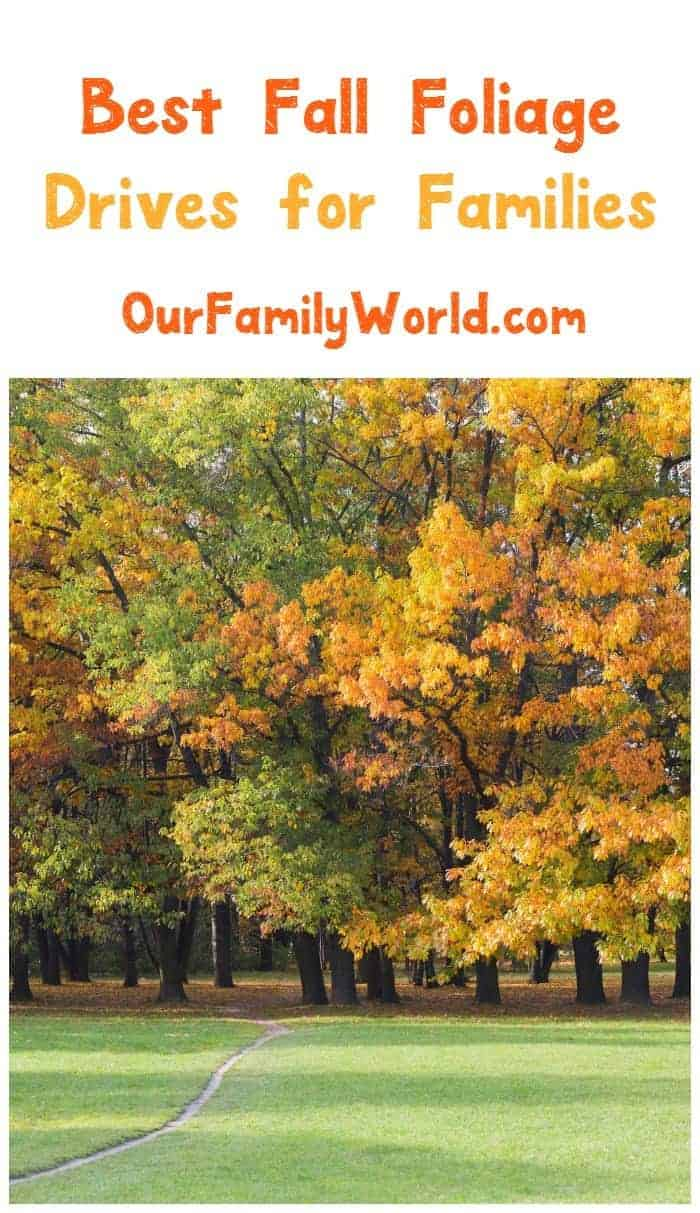 Head out & explore nature on your next family vacation by planning a trip that takes you on one of these best fall foliage drives in the US!