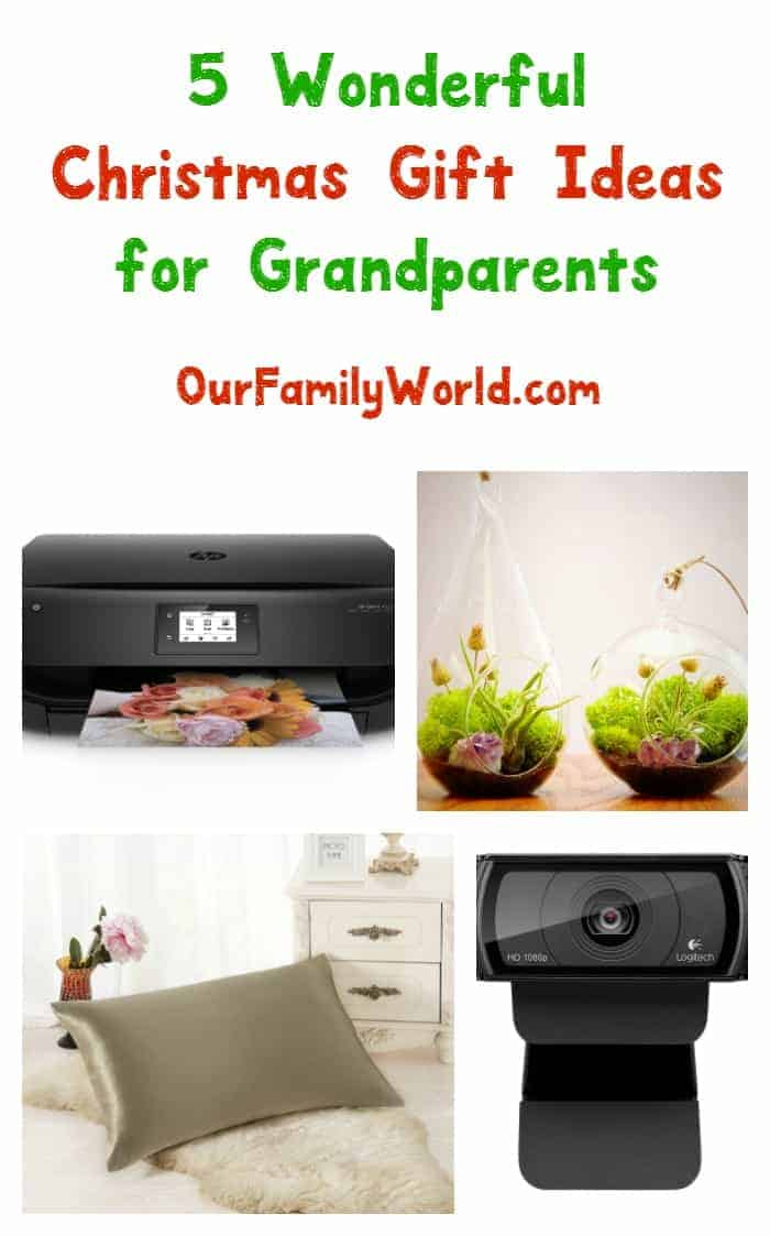 Stuck on what to get grandma and grandpa this year? Don't worry, we've got you covered! Check out 5 fabulous Christmas gift ideas for grandparents!