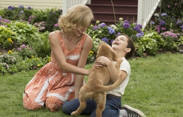 Looking for A Dog's Purpose movie quotes that will absolutely touch your heart? Check out a few of our favorites from both the film and the book!