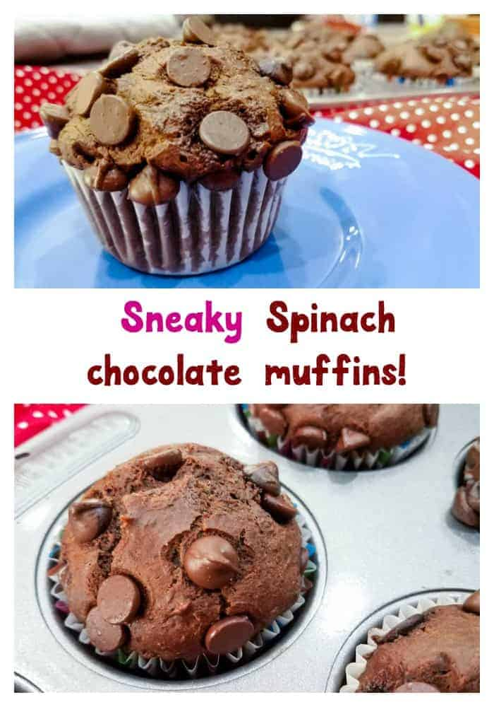 Grab a recipe for this sneaky spinach chocolate muffins. Kids and adults will ask for more. Try it. #ad