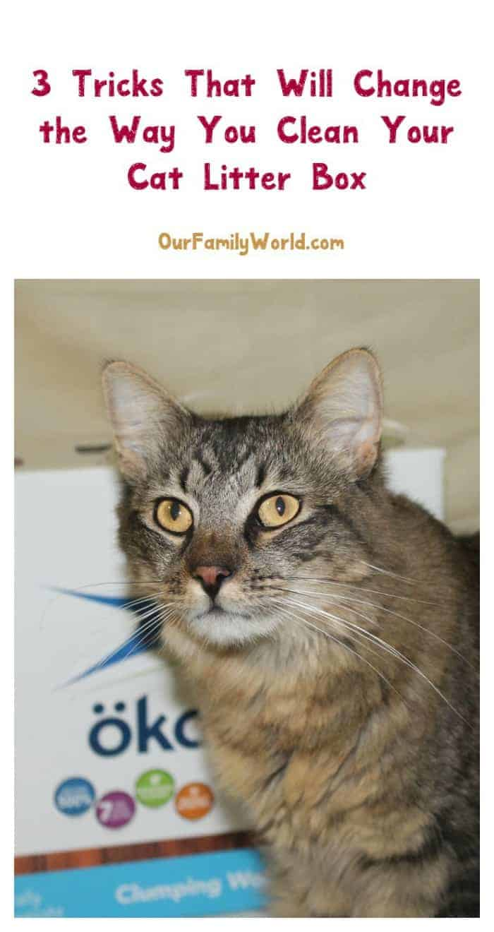 Check out favorite tips for cleaning you cat litter box! Pay attention to my tip about ökocat Natural Wood Clumping Cat Litter, it's going to surprise you!