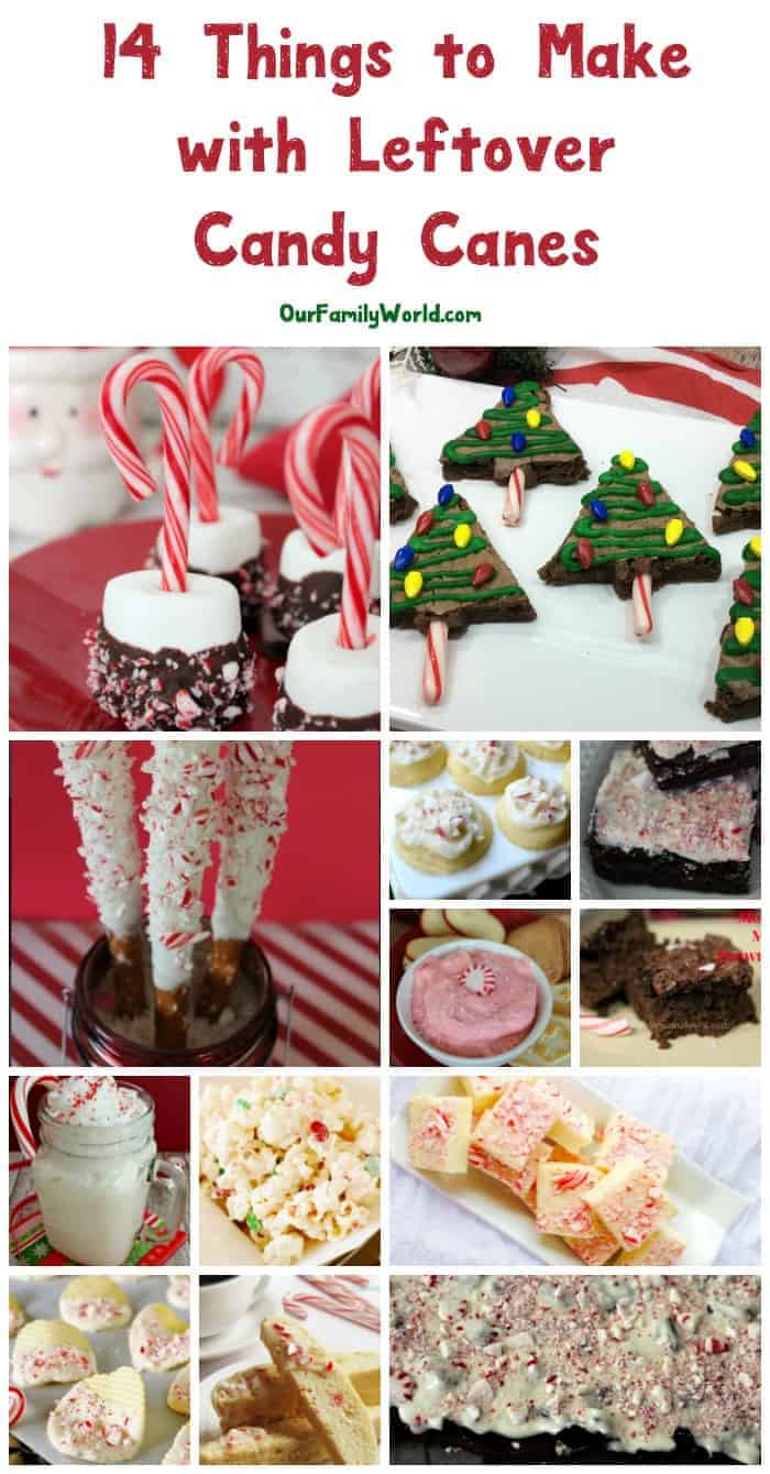 Did you know about all these delicious things to make with leftover candy canes? Check out 14 yummy Christmas dessert ideas that we found! The hardest part is deciding which to try first!