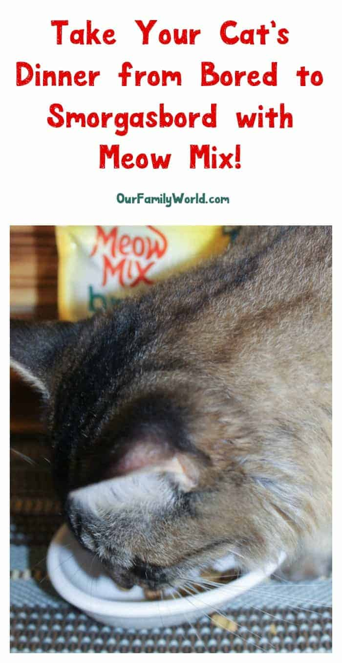 My cats go crazy for Meow Mix Brushing Treats and the new Meow Mix Simple Servings wet food! Check out their reaction plus find out how you can score some great savings!